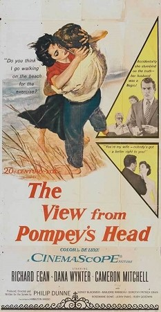 The View From Pompey's Head DVD